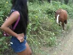 X videos br Novinha Perua Doida pra Fuder com Cavalo da Estrada